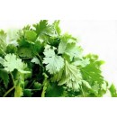 Dhania/Coriander Leaves - 100g